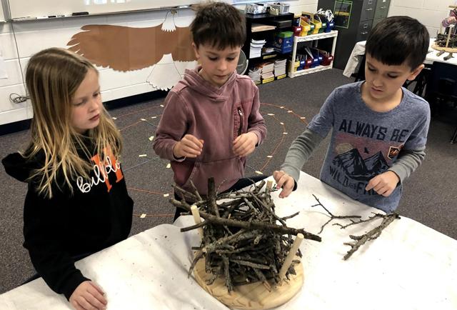 Bald Eagle Nest Shapes