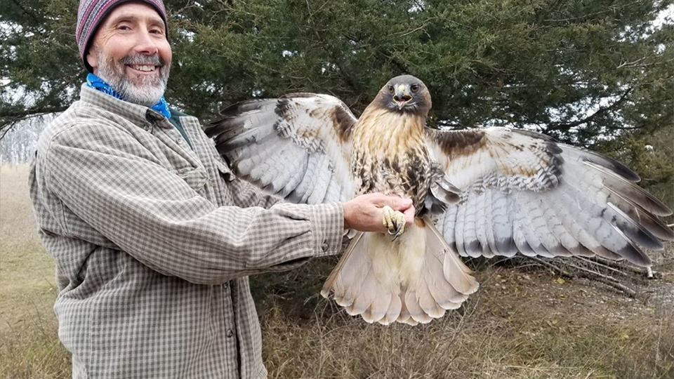 What kind of raptor is Dave Kester holding?